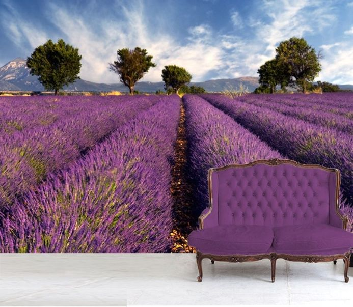 Lavender field in France wallpaper murals by Homewallmurals